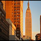 Empire State Sunset by davorjakov