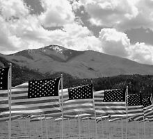 Field of Flags by Susan Chandler