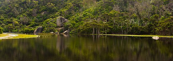 Tidal River in Flood by Daniel Robertson