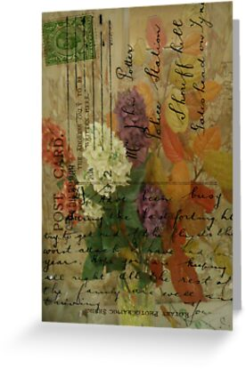 Postcard Flowers by Sarah Vernon