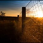 Country sunset- Queensland Australia by SamanthaHaworth