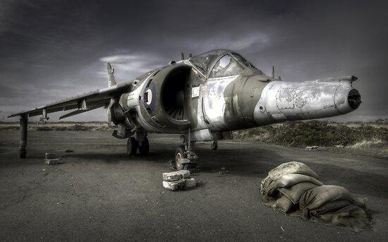 Harrier by igotmeacanon