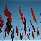red flags - Glastonbury 2010 by availablelight