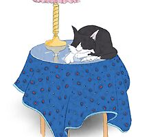 Macavity the cat - sleeping on a small table by Tim Griffiths