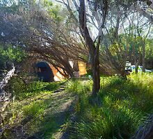 Psychedelic camp site by sharka69