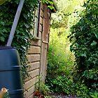 Garden Shed by naffarts
