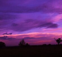 Purple Sunset - Chelmsford, England by MichelleRees