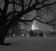 The United States Capital - Washington D.C by Matsumoto