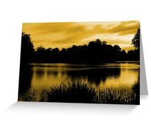 Reflections In Orange Greeting Card