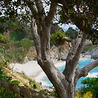 McWay Falls, Big Sur California by Diana Cardosi-Bussone
