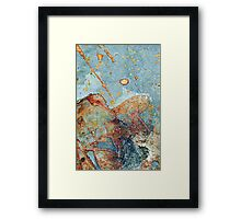 meteor skies Framed Print