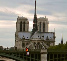 Notre Dame Cathedral by smallan