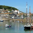 Barnabas in Mousehole Harbour by amandarose