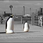 Penguins on the Esplanade in Redcar by robwhitehead