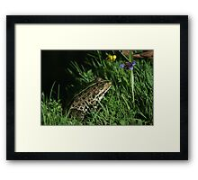 romantic Kermit Framed Print