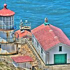 Lighthouse - Point Reyes California by Michael Rubin
