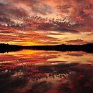 Rococo Sunset by Kamalyn