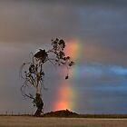 Tunbridge Tree by Mike Calder