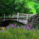 Country Bridge by Lori Deiter
