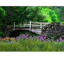 Country Bridge Photographic Print