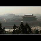Forbidden City by qishiwen