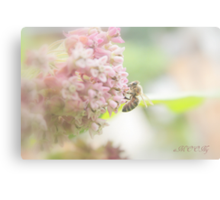 Pastel moment Canvas Print
