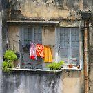 The washing line, Brazil by John Dalkin