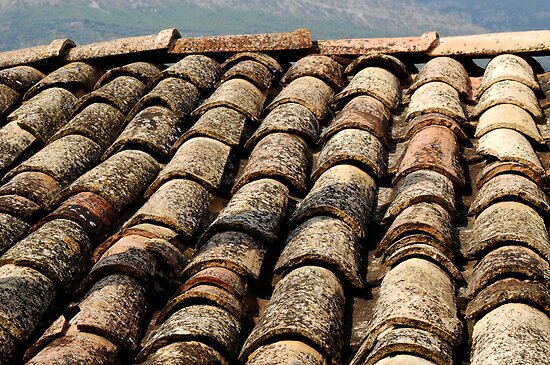 old roof tiles texture by Josep M Penalver