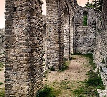Church ruins by Josep M Penalver