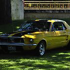 Yellow and Black Mustang by mltrue