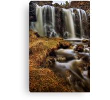Silky Flow (2) Canvas Print