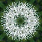 Snowflake by Margaret Walker
