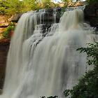 Brandywine Falls  by Sensitvesoul