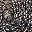 Spiral fractal (3) by Marjolein Katsma
