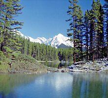 Moose Lake near Jasper, Alberta, Canada by Adrian Paul