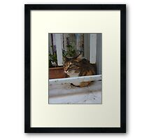 Watching the world go by Arles France Framed Print