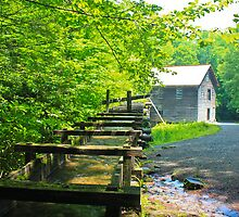 Water going to work at the mill. by Brett Wicker