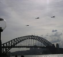 Black Hawk Helicopters, Sydney Harbour Bridge by bevy111