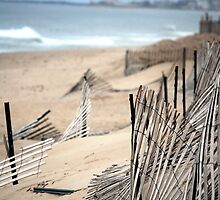 Fences Along a RI Beach by ChristineRose