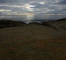 still light in paradise. tasmania, australia  by tim buckley | bodhiimages