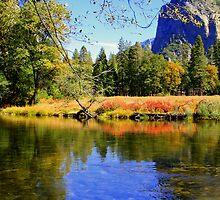 """Valley Reflections"" by Lynn Bawden"