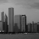 Chicago..my favorite city. by jammingene