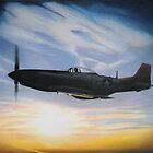 tuskeegee sunset-tuskeegee airmen series by ralburg