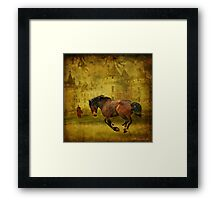 The Knight in Shining Armor's Horse Framed Print