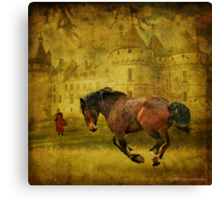 The Knight in Shining Armor's Horse Canvas Print