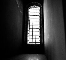 Window at St Michael's Mount by verwoody