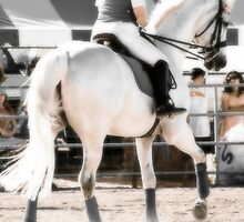 Dressage Horse and Rider by Nancy Stafford