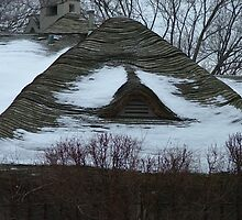 Undulation - Roof in Winter - Suburb of Chicago, Illinois by ArtsGirl2