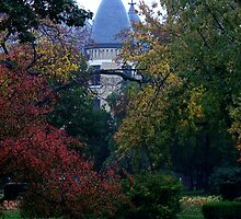 Notre Dame Campus - South Bend, Indiana, USA by ArtsGirl2