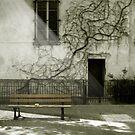 Paris - Plaisance #8 by Laurent Hunziker